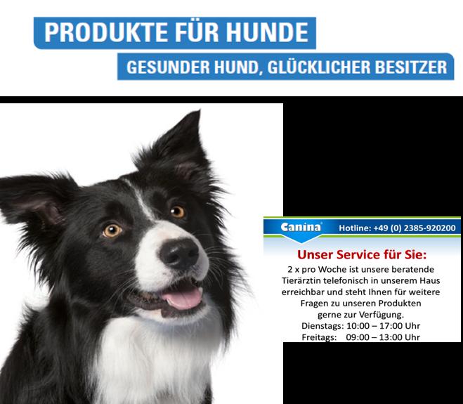 Produkte-f-r-Hunde1X2GeF3zfuJ46X