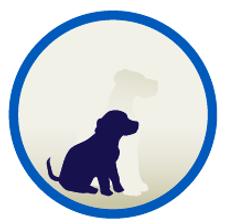 Hund-Welpenaufzucht