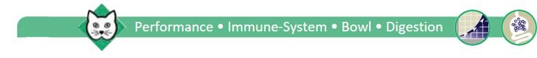 Leistung-Immunsystem-Darm-Verdauung-Katze1-englisch