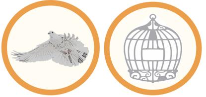 Vogel1-Pflege-Hygiene-k