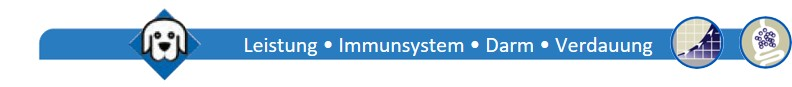 Leistung-Immunsystem-Darm-Verdauung-Hund-png